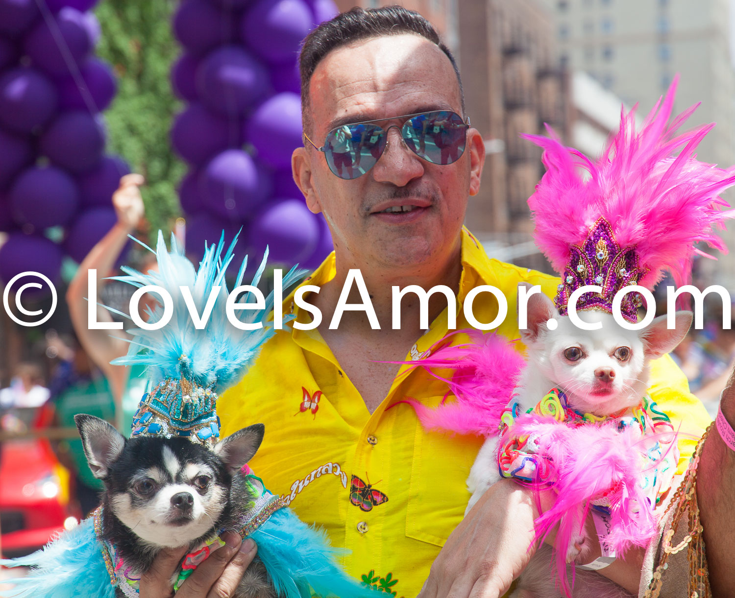 6/24/2018. New York City – The NYC Pride March celebrated 49 years. Man with 2 dogs. Photo by Javier Soriano/LoveIsAmor.com