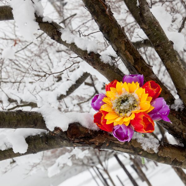 Wednesday, March 21, 2018. Brooklyn, New York City - Today was the first day of Spring, but it feels like Winter. It is snowing at the Brooklyn Bridge Park. I added flowers because it was the first day of Spring. Photo by Javier Soriano/LoveIsAmor.com
