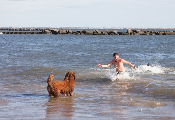 Coney island, Brooklyn. New York City. Tuesday, January 1, 2019 - Today was the New Year's Day Polar Bear Plunge at Coney Island, New York City. The temperature was more than 50 degrees today. Hundreds of people (and some dogs) attended the event. Credit: Photo by LoveIsAmor.com