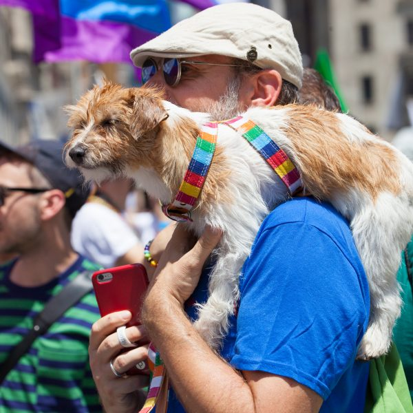 Sunday, June 30th, 2019. New York City - Man and his dog at the NYC Pride March. The 50th anniversary of the Stonewall Rebellion was on Friday, June 28th, 2019. People from around the world came to New York City to celebrate. Credit: Photo by LoveIsAmor.com